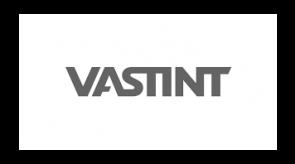 vastint.png